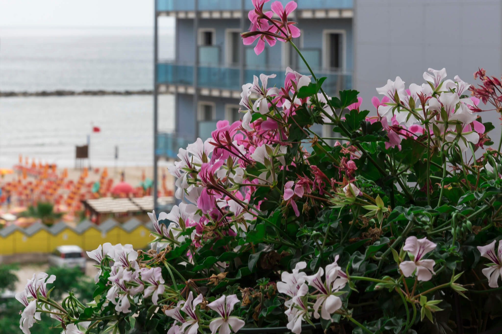 B&B Hotel Promenade Vista Mare